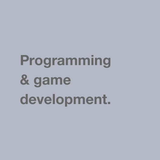 Programming & game development.